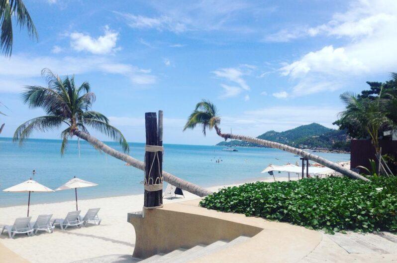 the-samui-beach-resort-pool