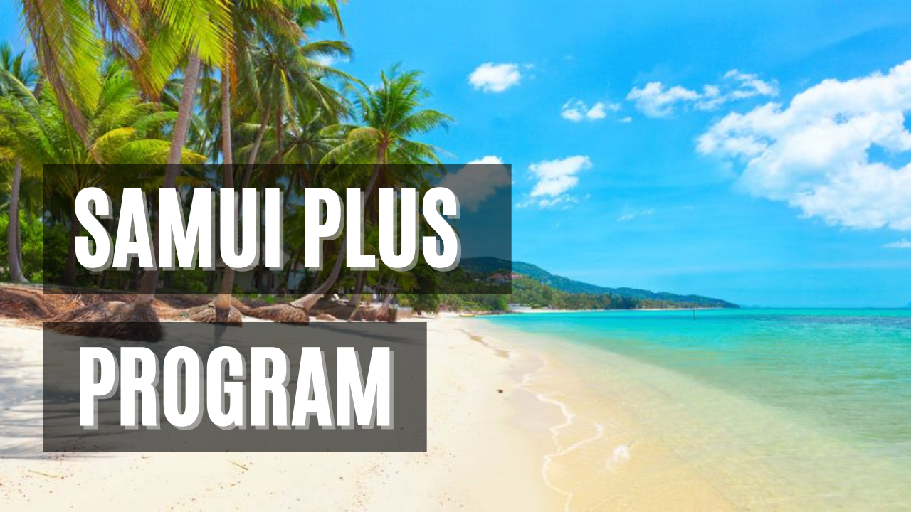 Samui Plus program